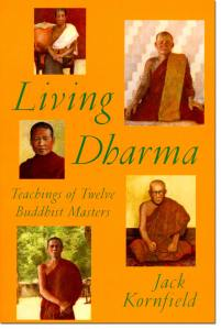 Insight by the nature method_Living dharma 1996.jpg